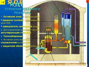 СТРОЕНИЕ ЯДЕРНОГО РЕАКТОРА 1. Активная зона. В ней находятся: ядерное топливо –