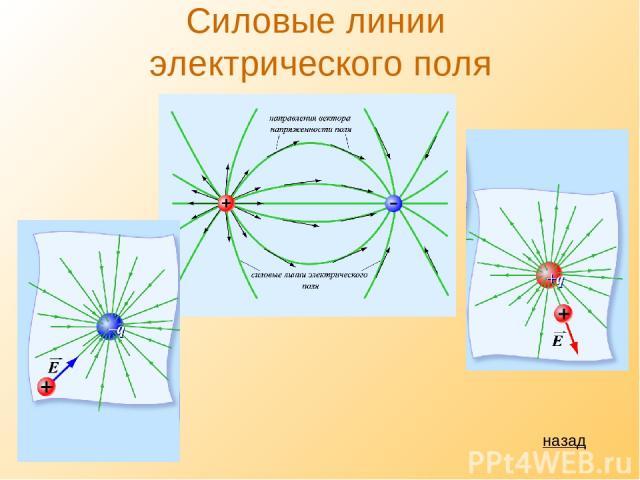 Силовые линии электрического поля назад