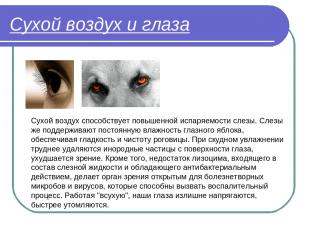 Сухой воздух и глаза Сухой воздух способствует повышенной испаряемости слезы. Сл