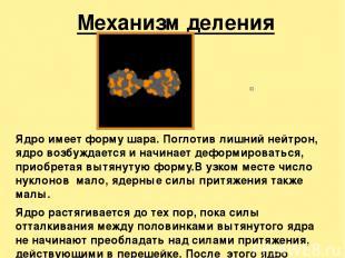 Механизм деления ядра Ядро имеет форму шара. Поглотив лишний нейтрон, ядро возбу