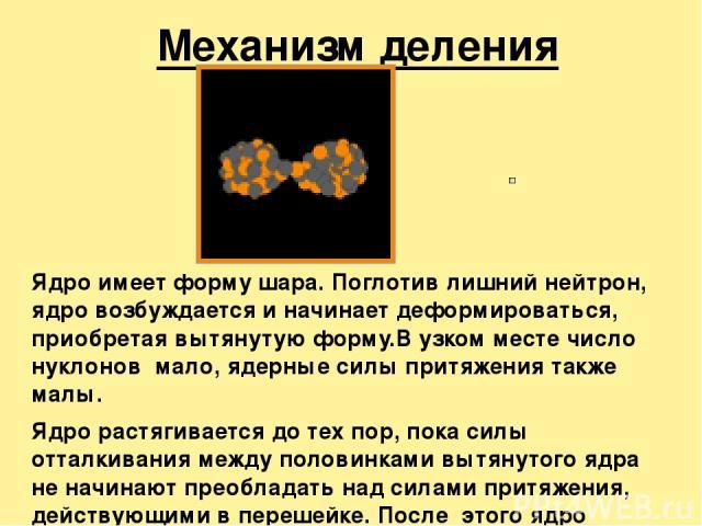 Механизм деления ядра Ядро имеет форму шара. Поглотив лишний нейтрон, ядро возбуждается и начинает деформироваться, приобретая вытянутую форму.В узком месте число нуклонов мало, ядерные силы притяжения также малы. Ядро растягивается до тех пор, пока…