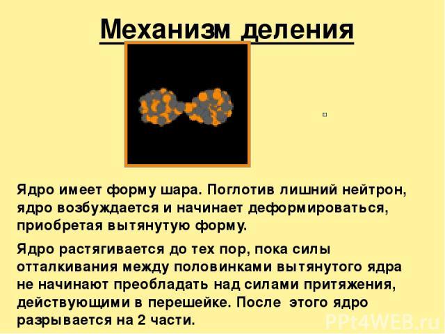 Механизм деления ядра Ядро имеет форму шара. Поглотив лишний нейтрон, ядро возбуждается и начинает деформироваться, приобретая вытянутую форму. Ядро растягивается до тех пор, пока силы отталкивания между половинками вытянутого ядра не начинают преоб…