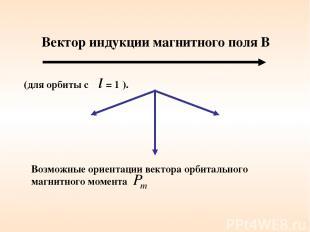 Вектор индукции магнитного поля В Возможные ориентации вектора орбитального магн