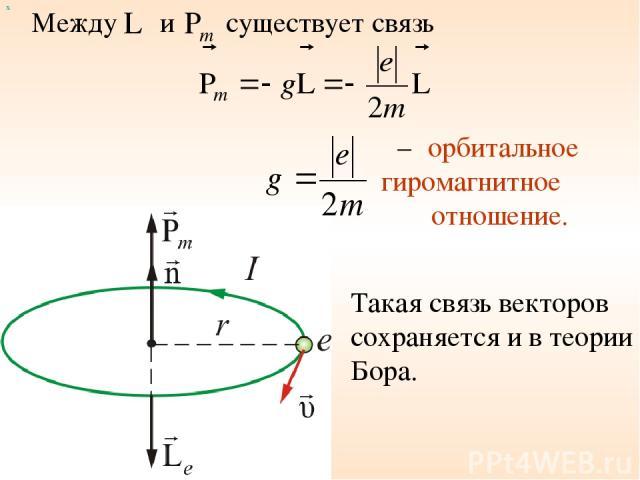 Между и х существует связь – орбитальное гиромагнитное отношение. Такая связь векторов сохраняется и в теории Бора.