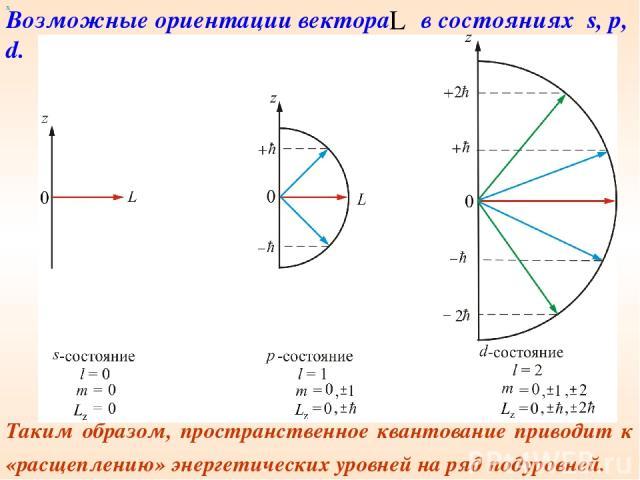 х Таким образом, пространственное квантование приводит к «расщеплению» энергетических уровней на ряд подуровней. Возможные ориентации вектора в состояниях s, p, d.