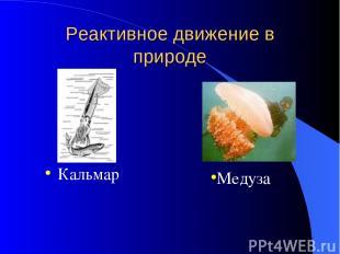 Реактивное движение в природе Кальмар Медуза
