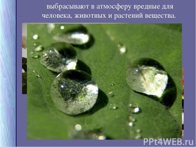 выбрасывают в атмосферу вредные для человека, животных и растений вещества.