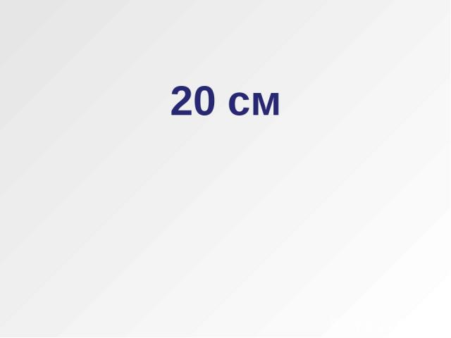 20 см