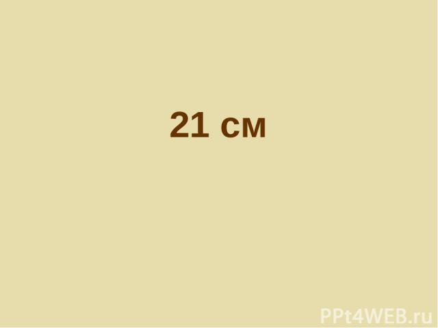 21 см