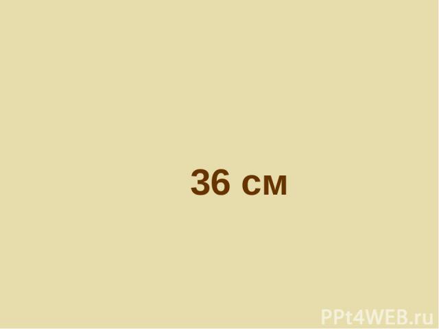 36 см