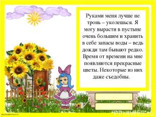 Скромный маленький голубой цветок, я расту где-нибудь на поляне или лесной опушк
