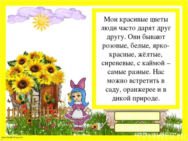 Мои красивые цветы люди часто дарят друг другу. Они бывают розовые, белые, ярко-красные, жёлтые, сиреневые, с каймой – самые разные. Нас можно встретить в саду, оранжерее и в дикой природе. ОТВЕТ ГОТОВ ПОДСКАЗКА http://linda6035.ucoz.ru/