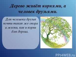 Дерево живёт корнями, а человек друзьями. Для человека друзья почти такая же опо