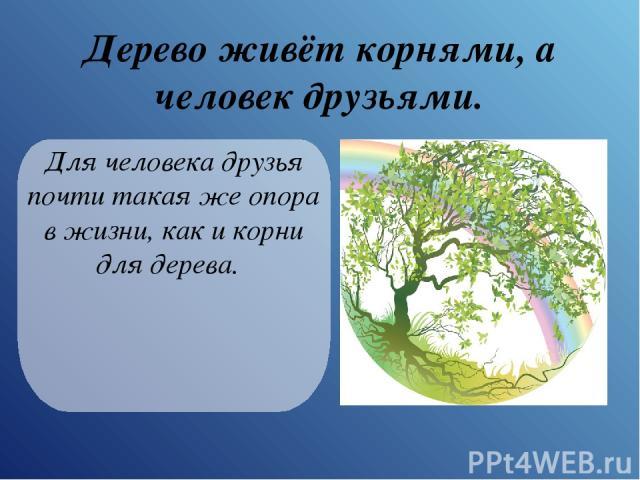 Дерево живёт корнями, а человек друзьями. Для человека друзья почти такая же опора в жизни, как и корни для дерева.