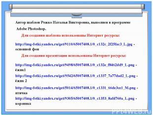 Для создания шаблона использованы Интернет ресурсы: Автор шаблон Рожко Наталья В