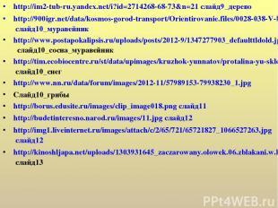 http://im2-tub-ru.yandex.net/i?id=2714268-68-73&n=21 слайд9_дерево http://900igr