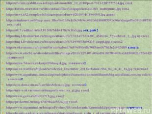 http://zforum.zyablikovo.net/uploads/monthly_10_2010/post-7313-1287577564.jpg со