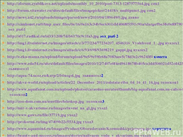 http://zforum.zyablikovo.net/uploads/monthly_10_2010/post-7313-1287577564.jpg сом1 http://forum.vitawater.ru/sites/default/files/imagepicker/24418/s_multipunct.jpg сом2 http://news.a42.ru/uploads/images/parsed/news/2010/04/189649/0.jpg данио http://…
