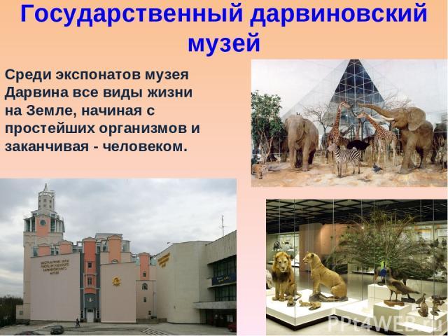 Государственный дарвиновский музей Среди экспонатов музея Дарвина все виды жизни на Земле, начиная с простейших организмов и заканчивая - человеком.