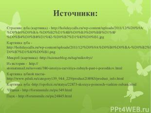 Источники: Строение зуба (картинка) - http://holidaycalls.ru/wp-content/uploads/