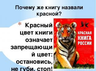 Красный цвет книги означает запрещающий цвет: остановись, не губи, стоп! Дальше