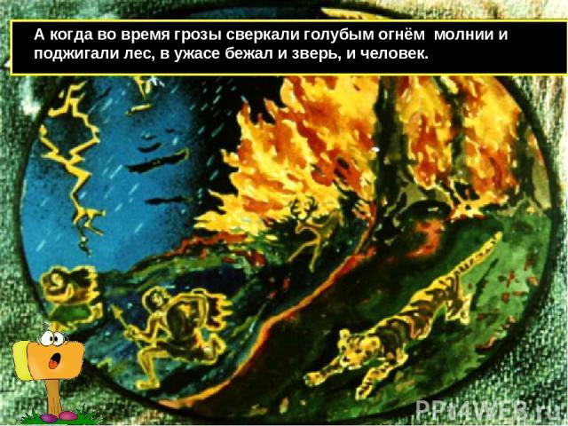 А когда во время грозы сверкали голубым огнём молнии и поджигали лес, в ужасе бежал и зверь, и человек.