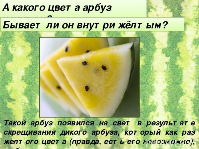 А какого цвета арбуз изнутри? Бывает ли он внутри жёлтым? Такой арбуз появился на свет в результате скрещивания дикого арбуза, который как раз желтого цвета (правда, есть его невозможно), с обычным.