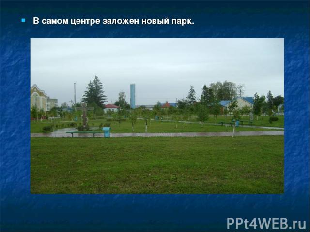 В самом центре заложен новый парк.