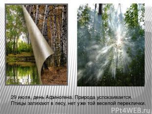 29 июля, день Афиногена. Природа успокаивается. Птицы затихают в лесу, нет уже т