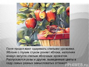 Поля продолжают одаривать спелыми урожаями. Яблоня с глухим стуком роняет яблоки