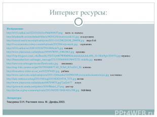 Интернет ресурсы: Изображения: http://s013.radikal.ru/i322/1102/d1/cf5fdd565637.