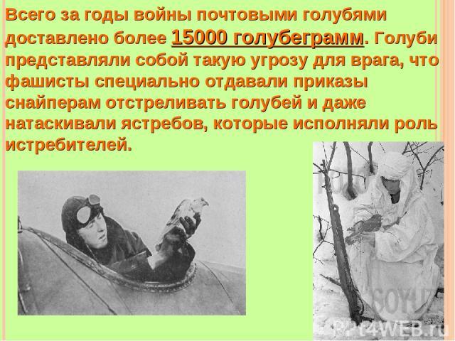 Всего за годы войны почтовыми голубями доставлено более 15000 голубеграмм. Голуби представляли собой такую угрозу для врага, что фашисты специально отдавали приказы снайперам отстреливать голубей и даже натаскивали ястребов, которые исполняли роль и…