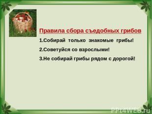 Правила сбора съедобных грибов Собирай только знакомые грибы! Советуйся со взрос