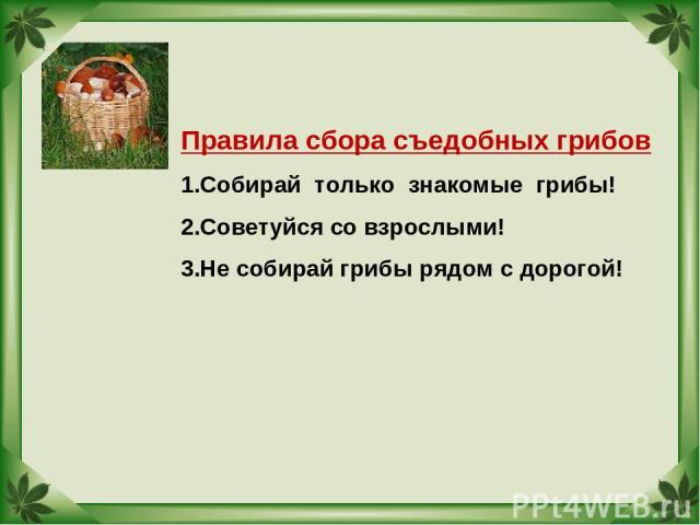 Правила сбора съедобных грибов Собирай только знакомые грибы! Советуйся со взрослыми! Не собирай грибы рядом с дорогой!