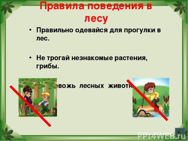 Правила поведения в лесу Правильно одевайся для прогулки в лес. Не трогай незнакомые растения, грибы. Не тревожь лесных животных.