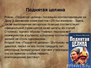 Поднятая целина Роман «Поднятая целина» посвящён коллективизации на Дону и движе
