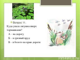 Вопрос 11. Куда упала лягушка вверх тормашками? А – на дорогу Б – в грязный пруд