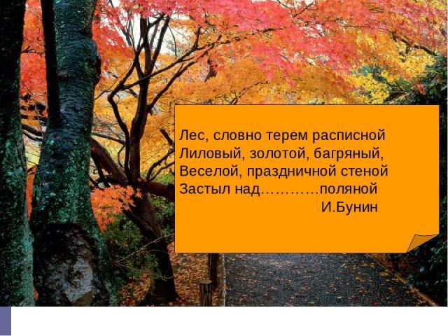 Лес, словно терем расписной Лиловый, золотой, багряный, Веселой, праздничной стеной Застыл над…………поляной И.Бунин