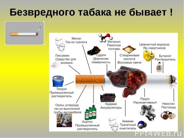 Безвредного табака не бывает !