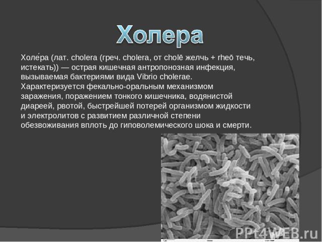 Холе ра (лат. cholera (греч. cholera, от cholē желчь + rheō течь, истекать)) — острая кишечная антропонозная инфекция, вызываемая бактериями вида Vibrio cholerae. Характеризуется фекально-оральным механизмом заражения, поражением тонкого кишечника, …
