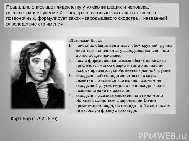 Правильно описывает яйцеклетку у млекопитающих и человека, распространяет учение Х. Пандера о зародышевых листках на всех позвоночных, формулирует закон «зародышевого сходства», названный впоследствие его именем. Карл Бэр (1792 1876) «Законами Бэра»…