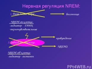 Нервная регуляция NREM: 1. Базальные ядра . NREM-on клетки: -медиатор - ГАМК -те