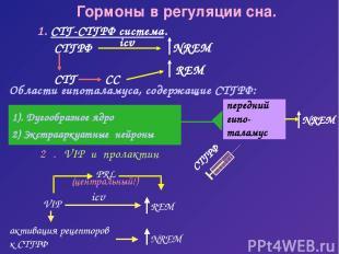 передний гипо- таламус Гормоны в регуляции сна. 1. СТГ-СТГРФ система. СТГРФ Обла