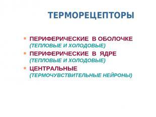 ТЕРМОРЕЦЕПТОРЫ ПЕРИФЕРИЧЕСКИЕ В ОБОЛОЧКЕ (ТЕПЛОВЫЕ И ХОЛОДОВЫЕ) ПЕРИФЕРИЧЕСКИЕ В