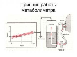Принцип работы метаболиметра