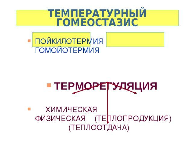 ТЕМПЕРАТУРНЫЙ ГОМЕОСТАЗИС ПОЙКИЛОТЕРМИЯ ГОМОЙОТЕРМИЯ ТЕРМОРЕГУЛЯЦИЯ ХИМИЧЕСКАЯ ФИЗИЧЕСКАЯ (ТЕПЛОПРОДУКЦИЯ) (ТЕПЛООТДАЧА) ТЕРМОИЗОЛИРУЮЩИЕ СВОЙСТВА ТКАНЕЙ