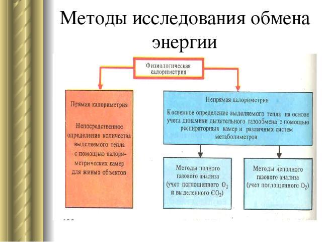 Методы исследования обмена энергии