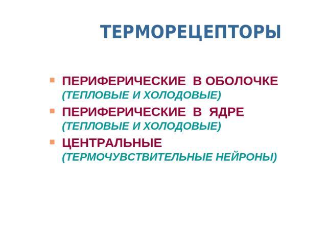 ТЕРМОРЕЦЕПТОРЫ ПЕРИФЕРИЧЕСКИЕ В ОБОЛОЧКЕ (ТЕПЛОВЫЕ И ХОЛОДОВЫЕ) ПЕРИФЕРИЧЕСКИЕ В ЯДРЕ (ТЕПЛОВЫЕ И ХОЛОДОВЫЕ) ЦЕНТРАЛЬНЫЕ (ТЕРМОЧУВСТВИТЕЛЬНЫЕ НЕЙРОНЫ)