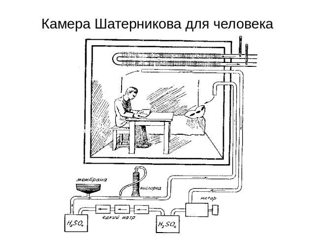 Камера Шатерникова для человека
