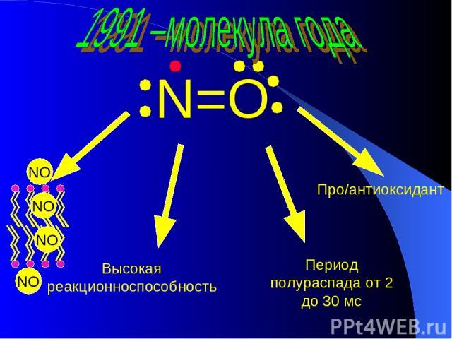 N=O Высокая реакционноспособность Период полураспада от 2 до 30 мс Про/антиоксидант NO NO NO NO
